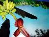 frutas_do_brasil_10