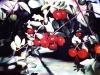frutas_do_brasil_39