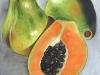 frutas_do_brasil_41