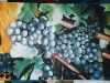 frutas_do_brasil_45